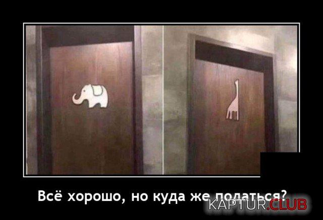 1617889576_demotivatory_17.jpg   Рено Каптур Клуб Россия   Форум KAPTUR.club