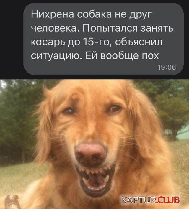 1627915529_podb_26.jpg   Рено Каптур Клуб Россия   Форум KAPTUR.club