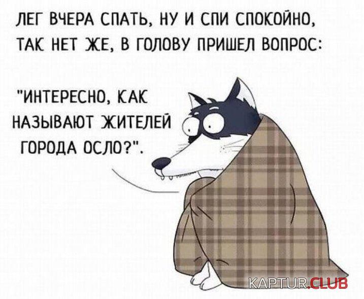 2ed13cdb6c3b8299f4428647f10.jpg | Рено Каптур Клуб Россия | Форум KAPTUR.club